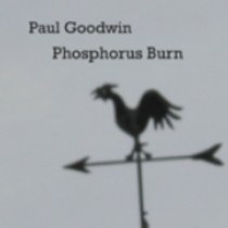 Phosphorus Burn by Paul Goodwin